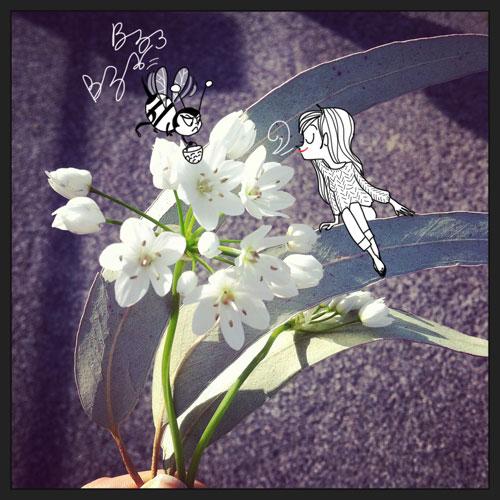 659_printemps